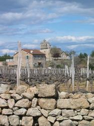 """Payzac -- Au premier plan, un """"accol"""" (ou une """"faïsse"""") de vigne, celui-ci est """"bien grand"""" d'ailleurs. La grande majorité des """"accols"""" de la région des Vans, et de la vallée du Chassezac, est d'une dimension bien inférieure, limitant la plantation de l'ordre de la dizaine de pieds (ou ceps de vigne)."""